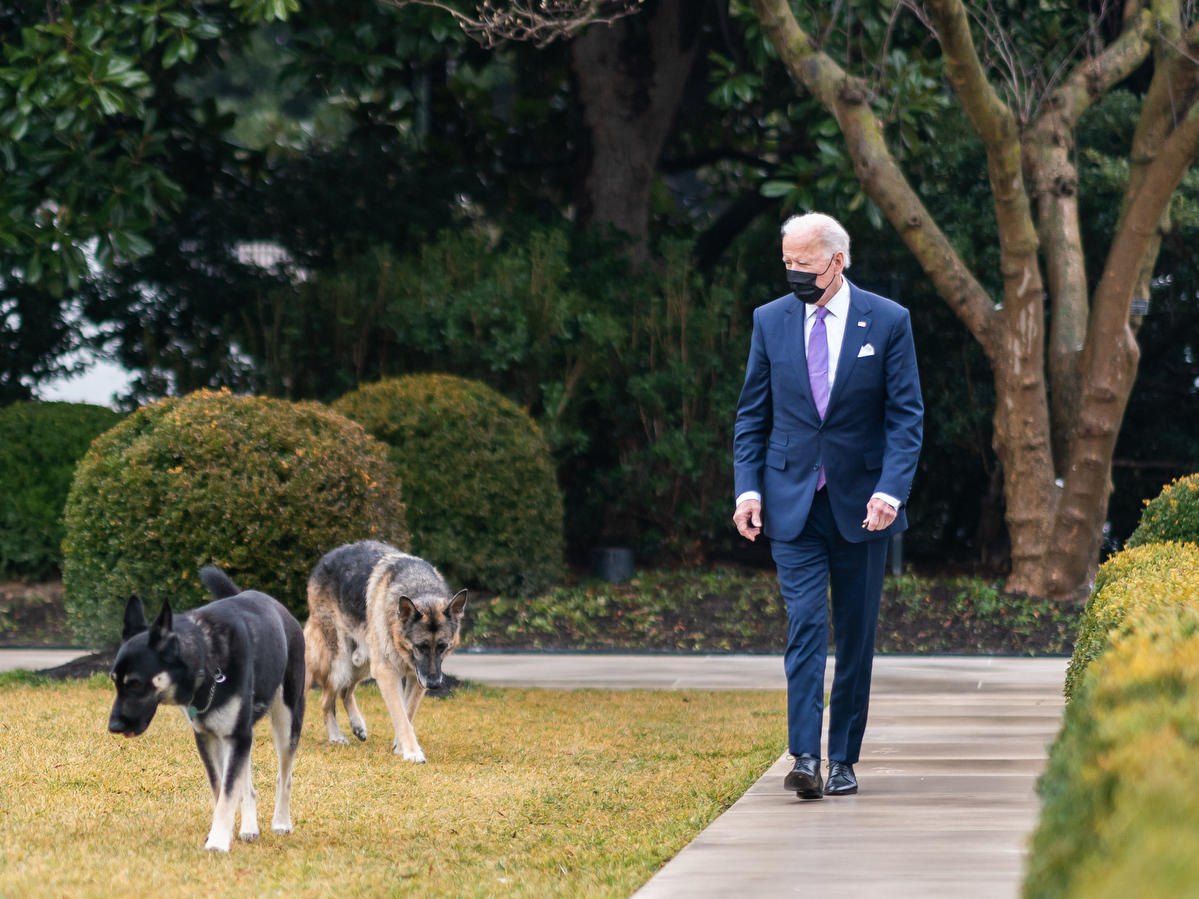P20210126AS-1271: President Joe Biden walks with his dogs Major and Champ in the Rose Garden of the White House Tuesday, Jan. 26, 2021. (Official White House Photo by Adam Schultz)